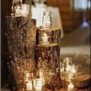 Wood Log Stumps